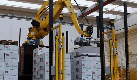 Skilled robotisering